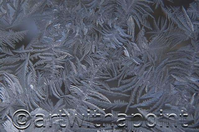 Frost on Window, New Years Day in Minnesota